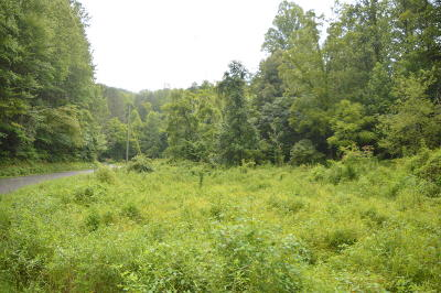 Sevier County Residential Lots & Land For Sale: Grassy Branch Rd