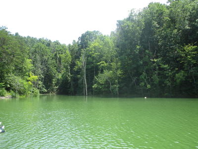 Dandridge Residential Lots & Land For Sale: Tranquility Tr