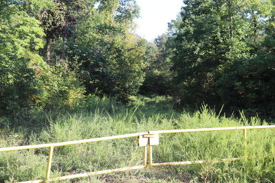 Tellico Plains Residential Lots & Land For Sale: 766 Shadden Rd