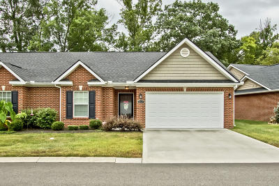 Knoxville Single Family Home For Sale: 8324 Tumbled Stone Way