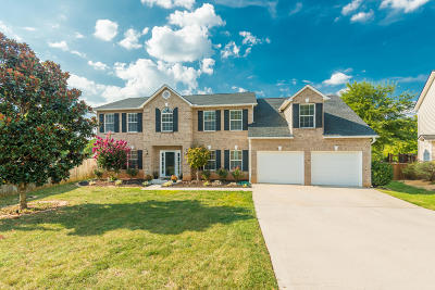 Knoxville Single Family Home For Sale: 1209 Sparwood Lane