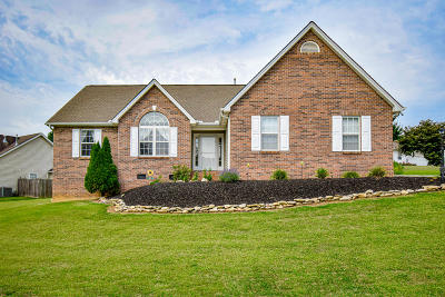 Knoxville Single Family Home For Sale: 1589 Maremonot Rd
