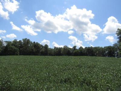 Residential Lots & Land For Sale: 22.90ac Rodgers Lane