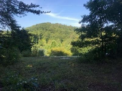 Friendsville, Greenback, Louisville, Maryville, Sevierville, Tallassee, Townsend, Townsend/walland, Vonore, Walland Residential Lots & Land For Sale: 3730 Meadowcove Lane