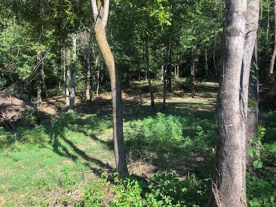Blount County Residential Lots & Land For Sale: Freels Rd