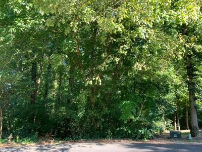 Loudon County Residential Lots & Land For Sale: 207 Inata Trace