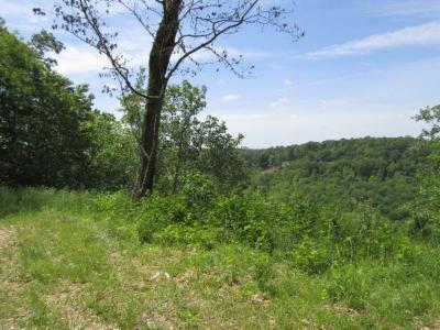 Residential Lots & Land For Sale: 24.36ac Casey Cove Rd