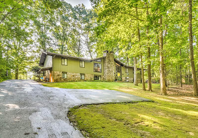 Sevier County Single Family Home For Sale: 1646 White Oak Drive