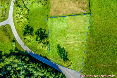 Anderson County, Campbell County, Claiborne County, Grainger County, Union County Residential Lots & Land For Sale: Swan Song Tr
