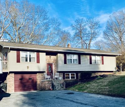 Single Family Home For Sale: 131 Summit Drive