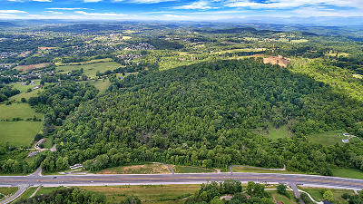 Knoxville Residential Lots & Land For Sale: 8211 Maynardville Pike