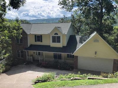 Gatlinburg Single Family Home For Sale: 354 Gatlin Drive