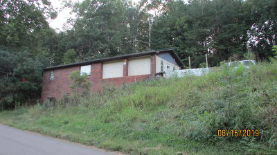 Tellico Plains Single Family Home For Sale: 1355 Belltown Rd