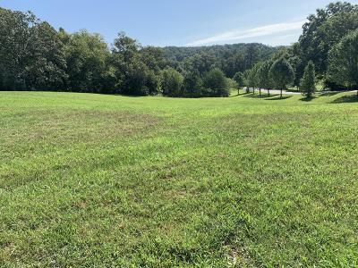 Knoxville Residential Lots & Land For Sale: 9076 Martin Mill Pike