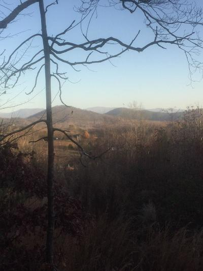 Tellico Plains Residential Lots & Land For Sale: 295 Payne Rd