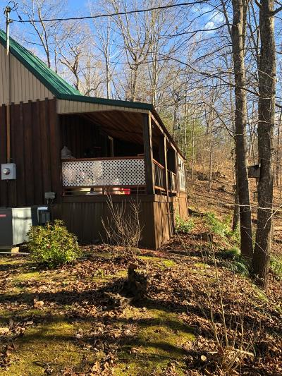 Hawkins County Single Family Home For Sale: 207 Hickman Hollow Rd