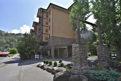Sevier County Condo/Townhouse For Sale: 215 Woliss Lane #201