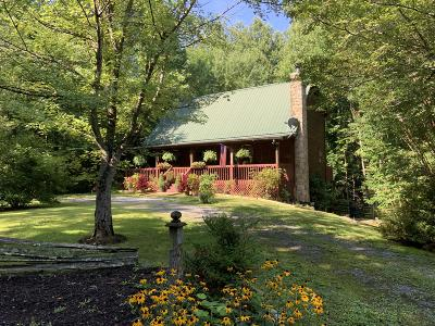 Sevierville Single Family Home For Sale: 3540 Ginseng Way