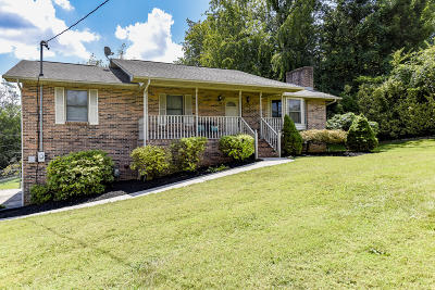 Sevier County Single Family Home For Sale: 339 Iroquois Lane
