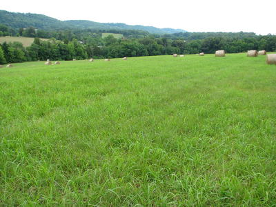 Loudon County Residential Lots & Land For Sale: Prospect Church Rd