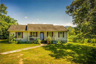 Hawkins County Single Family Home For Sale: 207 Carver Rd