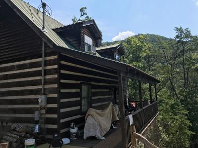 Townsend Single Family Home For Sale: 1233 Carrs Creek Road Rd
