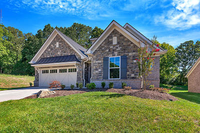 Knoxville Single Family Home For Sale: 1290 Loggerhead (Lot 17) Lane