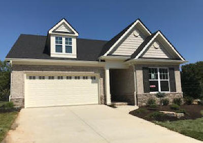 Knoxville Single Family Home For Sale: 1243 Loggerhead Lane