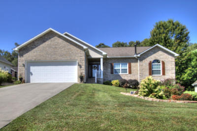 Loudon Single Family Home For Sale: 206 Tuhdegwa Lane