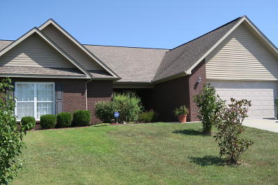 Maryville Single Family Home For Sale: 918 Thunder Creek Drive