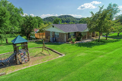Hawkins County Single Family Home For Sale: 1404 Chamber St
