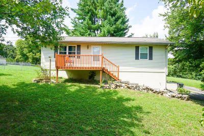 Knoxville Single Family Home For Sale: 7027 Seaver Drive