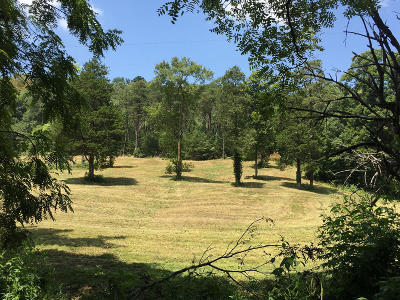 Jefferson City Residential Lots & Land For Sale: Tract 2 Sellers Rd