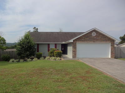 Sevier County Single Family Home For Sale: 1105 Stone Creek Lane