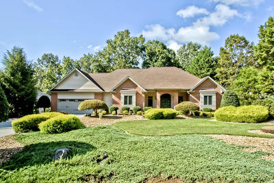 Loudon Single Family Home For Sale: 102 Seminole Lane