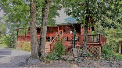 Single Family Home For Sale: 335 Goose Point