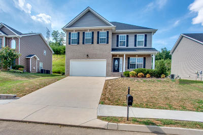 Knoxville Single Family Home For Sale: 6035 Hollow View Lane