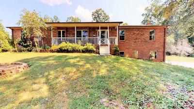 Single Family Home For Sale: 817 Dogtown Rd