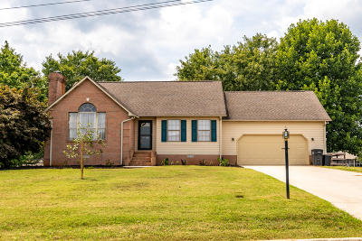 Maryville Single Family Home For Sale: 433 Wilaway Rd