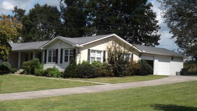 Tazewell, New Tazewell, Harrogate, Eagan, Sneedvile, Sneedville Single Family Home For Sale: 206 Kincaid Rd