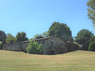 Loudon County Single Family Home For Sale: 5141 Scenic Drive