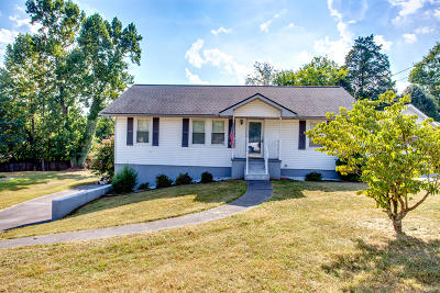 Knoxville Single Family Home For Sale: 229 Mount David Drive