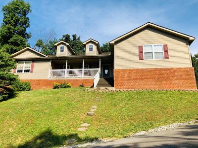 Sevier County Single Family Home For Sale: 631 Rockhouse Rd