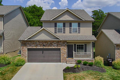 Knoxville Single Family Home For Sale: 1608 Silver Spur Lane