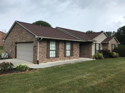 Knoxville Single Family Home For Sale: 8018 Phyllis Lane