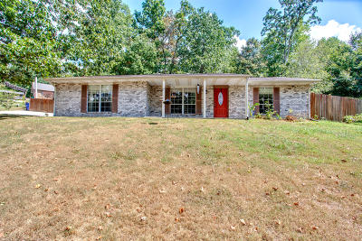 Knoxville Single Family Home For Sale: 3924 Hillbrook Drive