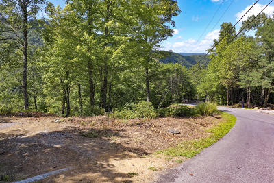 Blount County Residential Lots & Land For Sale: Kelley Ridge Rd