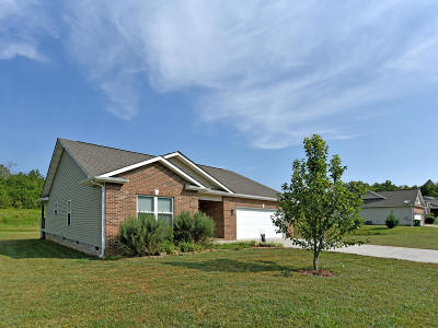 Anderson County Single Family Home For Sale: 139 Cornerstone Circle