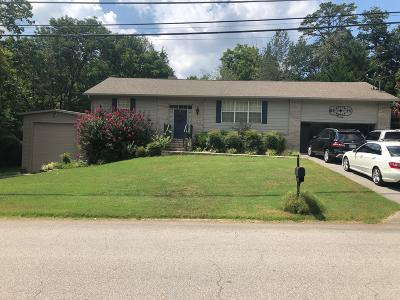 Knoxville Single Family Home For Sale: 423 Echo Valley Rd