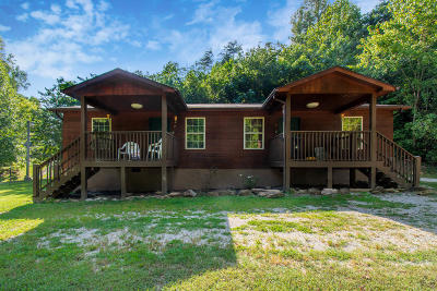Sevierville Single Family Home For Sale: 1035 Indian Gap Rd